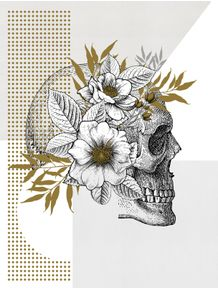 quadro-anatomia-das-flores