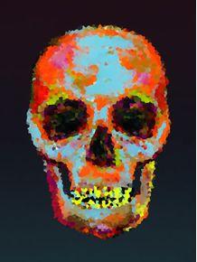 quadro-caveira-moderna-colorida
