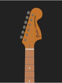 quadro-stratocaster-guitar