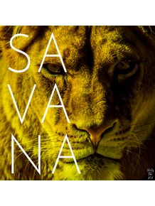 quadro-savana--travel-series