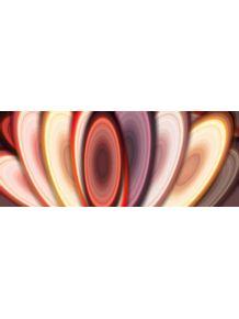 quadro-color-l5
