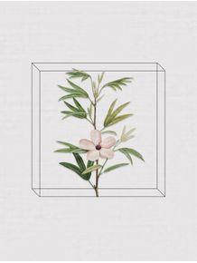 quadro-antique-flora-iv