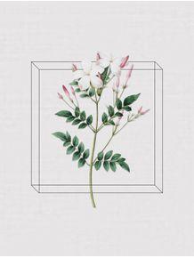 quadro-antique-flora-iii