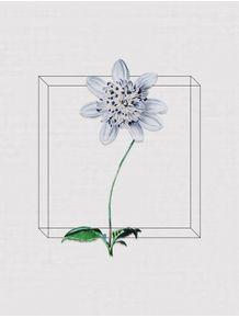 quadro-antique-flora-i