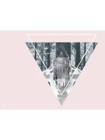 quadro-reflexo-de-um-inverno-floresta
