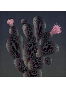quadro-night-cactus