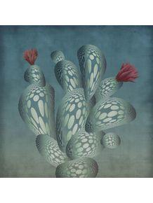 quadro-ok-cactus