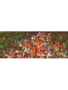 quadro-favela--panoramico-h