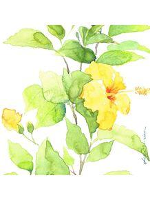 quadro-hibiscus-i