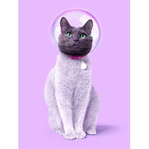 quadro-space-cat