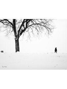 quadro-inverno-so
