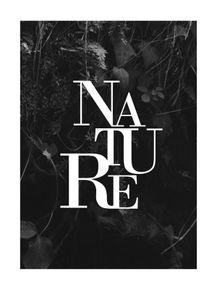 quadro-paisagens-e-palavras-nature--preto-e-branco