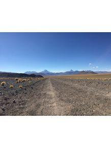 quadro-rota-del-desierto