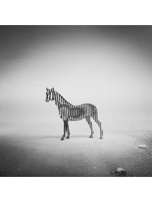 quadro-zebra-mist