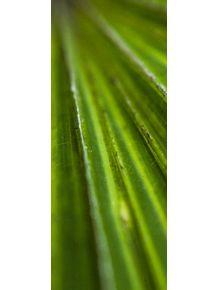 quadro-verde--triptico-2