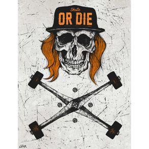 quadro-skull-boarder