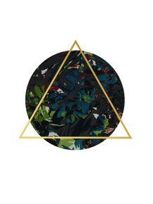 quadro-dark-floral-triangle