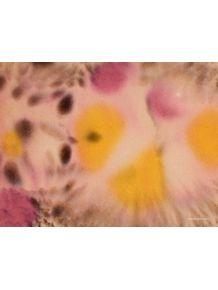 quadro-desfoque-roxo-e-amarelo