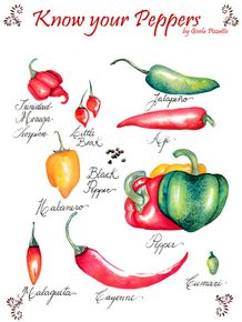 quadro-know-your-peppers