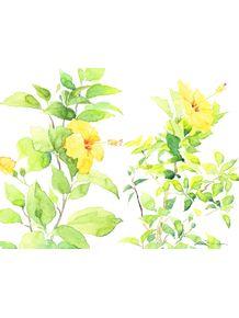 quadro-hibiscus-i-e-ii--paisagem