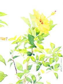 quadro-hibiscus-i--retrato