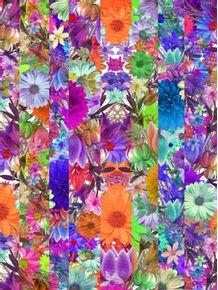 quadro-flowers-04-dbt