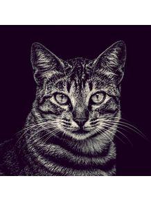 quadro-retrato--gato-da-dona-olga