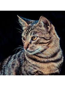 quadro-perfil--gato-da-dona-olga
