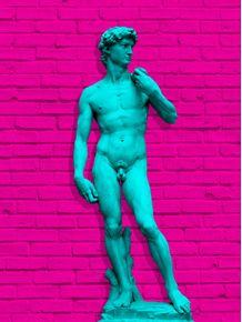 quadro-david-fluor-pink