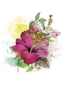 quadro-hibisco-aquarela