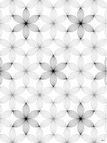 quadro-lily-white