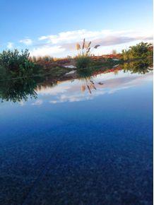 quadro-natureza-reflexo