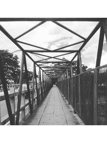 quadro-caminhos-do-interior