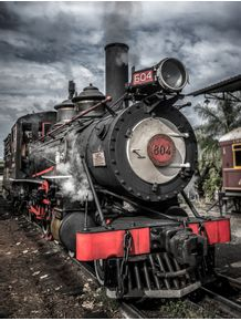quadro-train-604