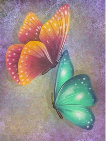 COLORFUL-BUTTERFLIES