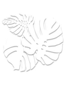 IMA---WHITE-TROPICAL-2