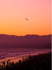 SUNSET-AT-SANTA-MONICA