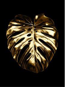 GOLDEN-FOLHAS-