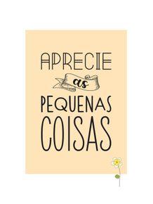 APRECIE-AS-PEQUENAS-COISAS