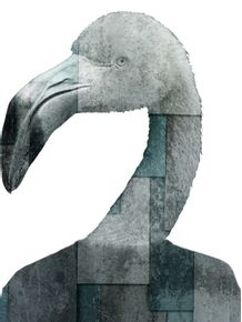 CITY-OF-BIRDS-02