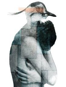 CITY-OF-BIRDS-03