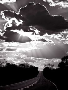 ROAD-TO-THE-LIGHT