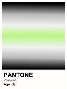 PRIDE-AGENDER-PANTONE