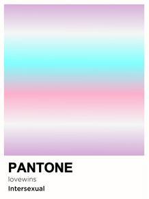 PRIDE-INTERSEXUAL-PANTONE