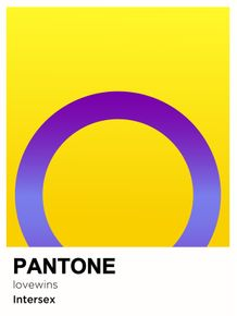 PRIDE-INTERSEX-PANTONE