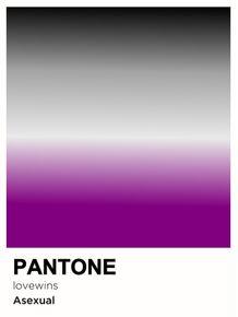 PRIDE-ASEXUAL-PANTONE