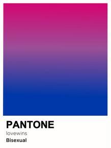 PRIDE-BISEXUAL-PANTONE