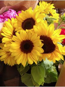 BOUQUET-OF-SUNFLOWERS