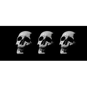 POST MORTEM II - PAN. HORIZONTAL
